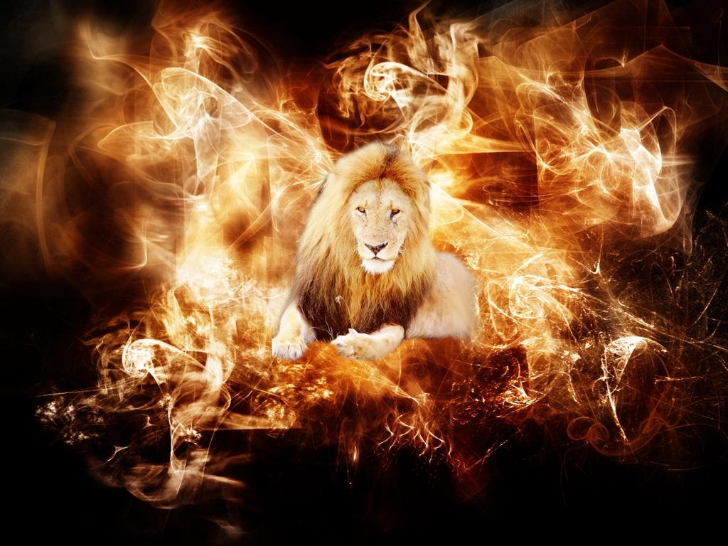 Leon entre llamas