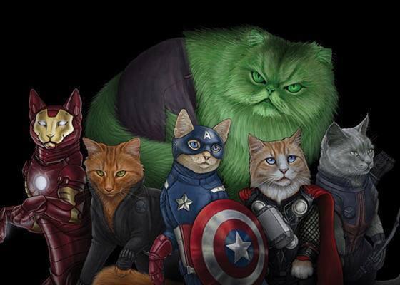 Marvel y los gatos