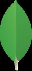mongoDB (imagen destacada)