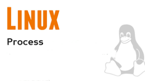 Procesos Linux (imagen destacada)