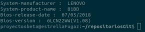 Información del BIOS en la terminal de GNU Linux (imagen destacada)