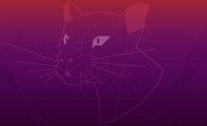 Ubuntu 20.04 LTS Focal Fossa Beta (imagen destacada)