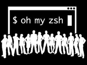 Zsh (imagen destacada)